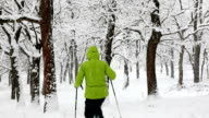 Walking in the woods during a snowfall - HD1080P video