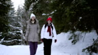 Walking in winter video