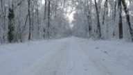 Walking on a hidden path in the snow covered forest in winter video