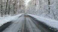 Walking on a road in the snow covered forest in winter video