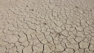 Walking on desert dry soil, first point of view. Climate change, global warming video