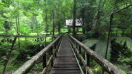 Walking on Hanging Bridge video
