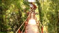 Walking Over Hanging Bridge video