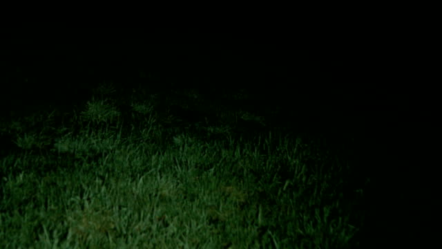 Walking through scary grassy field at night video