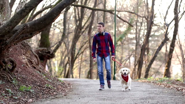 Walking with dog in park video