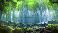Wall of water flows over old mossy dam video