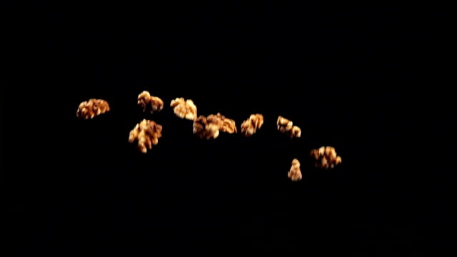 SLOW: Walnuts fly up and fall video