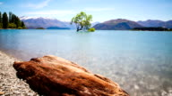 Wanaka Tree New Zealand Landscape Time Lapse video