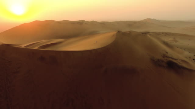 Wandering through the desert video