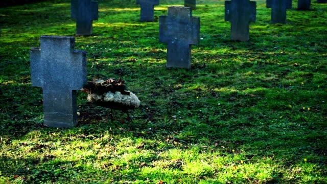 War Grave video