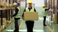 Warehouse Employee Walking With A Box video