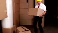 Warehouse manager injuring his back moving boxes video