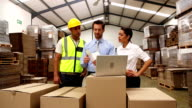 Warehouse managers and worker looking at laptop video