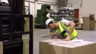 Warehouse worker checking cardboard boxes for shipping video