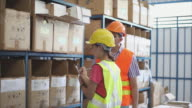 4K, Warehouse workers counting stock video