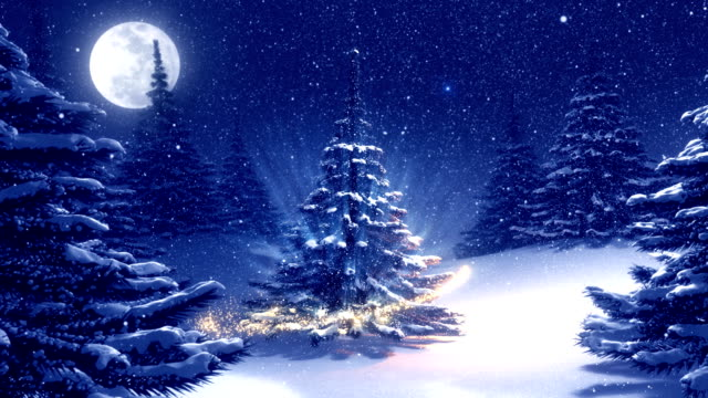Warm blue winter landscape with decorated Christmas tree. video