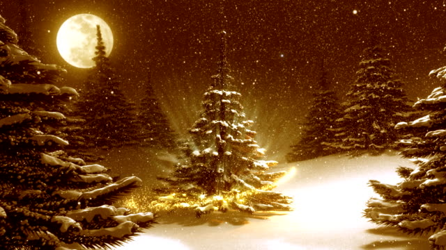 Warm golden winter landscape with decorated Christmas tree. video