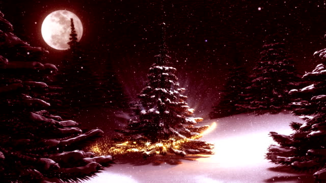 Warm red winter landscape with decorated Christmas tree video
