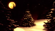 Warm winter landscape with Christmas tree decorated by polar star. video