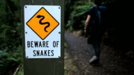 Warning Snakes HD video