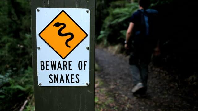 Warning Snakes HD video