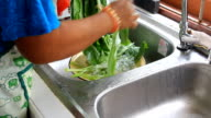 wash vegetables video