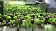 Washing Olives video