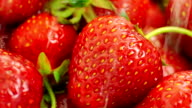 Washing Strawberries With Water. video