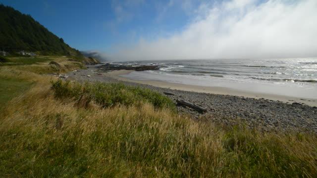 Washington Beach in sunny day video