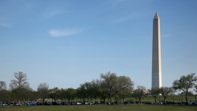 Washington Monument and Trees video