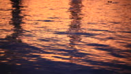 Water Background at Sunset video