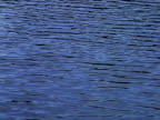 Water background video