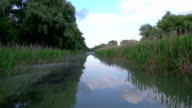 Water channel, river in Danube Delta video