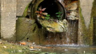 Water drain video
