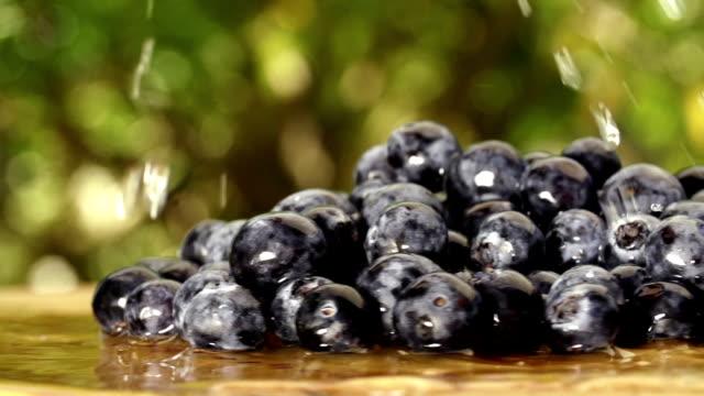Water drops falling on Blueberries in slow motion video