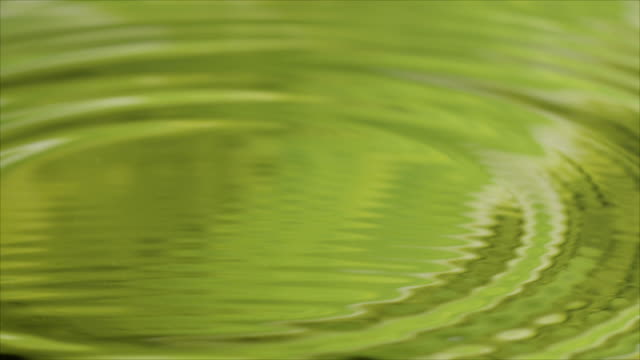 Water drops in slow motion, with reflection of green jungle video