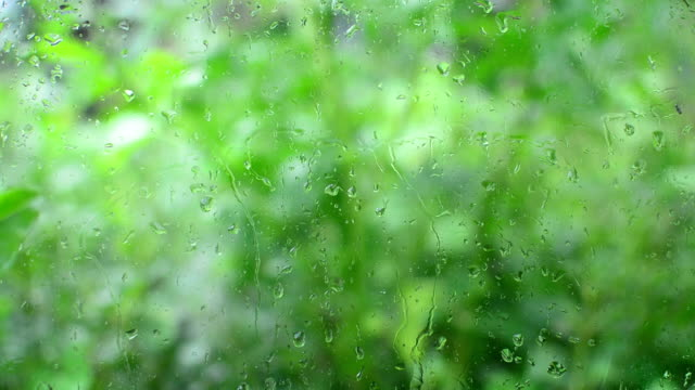 Water drops on glass video