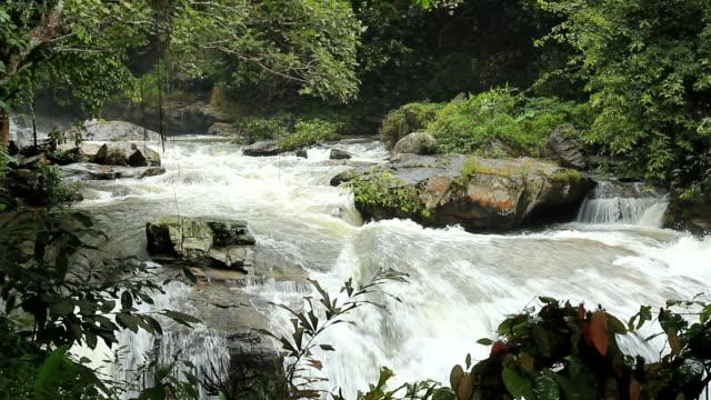Water fall video