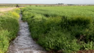 water flowing in an irrigation canal video