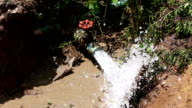 water gushes from a pipe video
