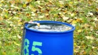 water in a barrel, blue water tank in the autumn garden video