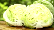 Water is dropping on fresh lettuce video