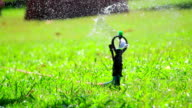 water jet sprinkling green grass close-up video