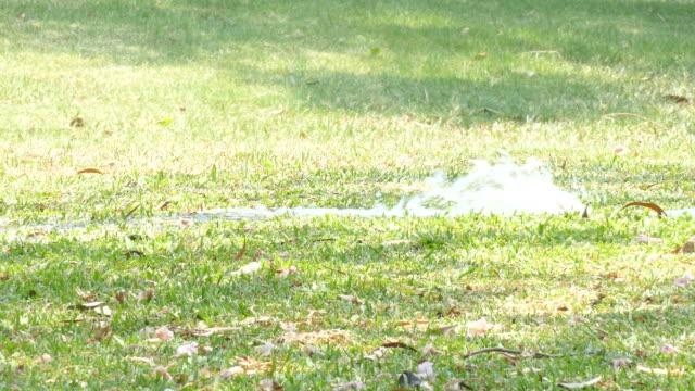water leaking on yard video