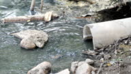 Water Pollution. video