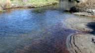 Water Ripples In Small Stream Heading For The Ocean video