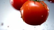 Water splash on tomato, Slow Motion video