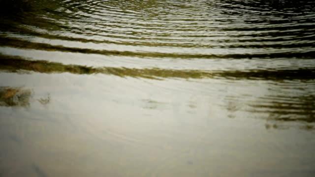 Water Splash ! video