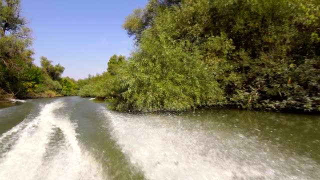 Water Splashing Behind a Motor Boat video