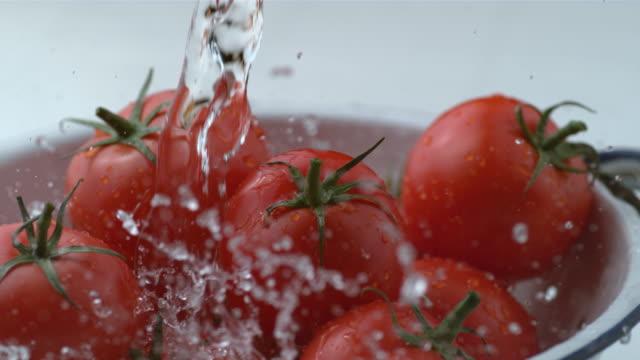 Water splashing onto tomatoes in slow motion video
